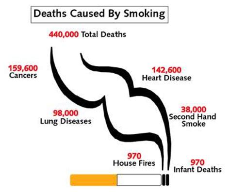 Effects of Smoking on Liver in Hindi - धूम्रपन क फेफड